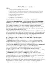 TEMA 1 - Mineralogía y Petrología