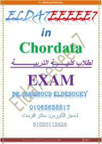 chordata exame for 2nd level biology
