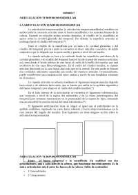 DESCRIPCIÓN DE LA ARTICULACIÓN TEMPOROMANDIBULAR