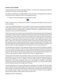 "Riassunto del capitolo II ""Islam e la vita cittadina"" di Ugo Monneret de Villard"