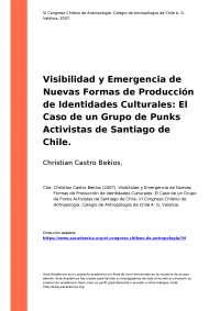 El Caso de un Grupo de Punks Activistas de Santiago de Chile