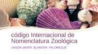 código internacional de zoológia