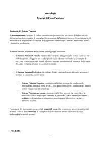 """Sintesi Libro """"Neurologia principi di Fisiopatologia"""""""