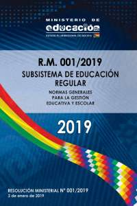 resolucion ministerial 001/2019