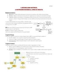 Metabolismo Batterico, Nutrizione Microbica e Curva di crescita