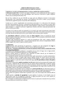 Sintesi manuale di diritto processuale civile sassani