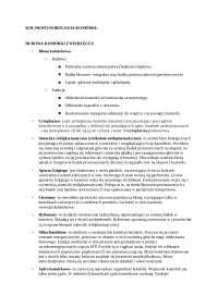 biologia komórki- notatki semestr 2