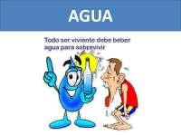 Unidad 1: Agua funciones en el organismo