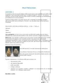 lezioni paletnologia