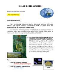 Sintesis de Ciclos Biogeoquimicos