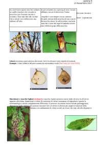 Glossario sintomatologico 3