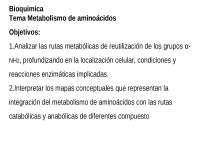 CATABOLISMO AMINOACIDOS