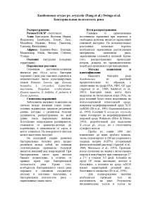 108. Бактериальная полосатость риса Xanthomonas oryzae pv. oryzicola