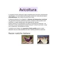 Avicoltura e cunicoltura
