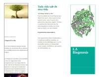 Biogenesis y conceptualidad