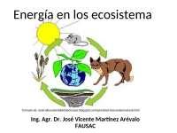 Energía de los ecosistemas