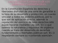 TEMA 3 DERECHO CONSTITUCIONAL III