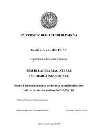 Studio di fenomeni dinamici di rilevanza in catalisi attraverso l'utilizzo del sistema modello Fe/TiOx/Pt