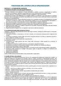 RIASSUNTO Psicologia del lavoro e delle organizzazioni, Avallone