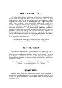 Anticka knjizevnost, Basne Ezop, Beleške' predlog Grćka književnost