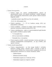 Cisterne mozga i kratki opis mozdanih cisterni, Beleške' predlog Anatomija