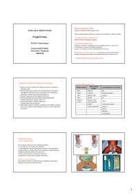 Pregled Urina. Rutinski Pregled Urina sinonim za fizičko-hemijski pregled urina. Predavanja Iz Kliničke Hemije, Vežbe' predlog Hemija