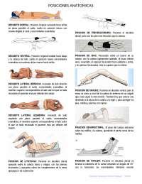 Posiciones Anatomicas Apuntes De Enfermería Docsity