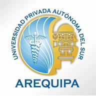 Universidad Privada Autónoma del Sur (UPADS) - Logo