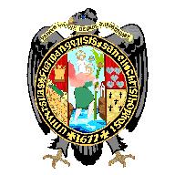 Universidad Nacional de San Cristóbal de Huamanga (UNSCH) - Logo