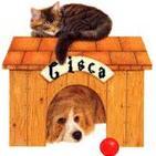 cisca_hierro92