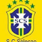 Selecao2010