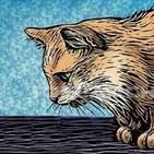 antonio.gatto92