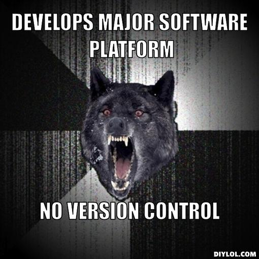 version control, Dumbest Coding Mistakes