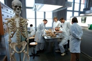 10 Realities of a Medical Student