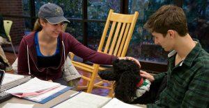 University of Virginia students' life during exam season