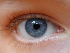 50 Interesting Facts about Eyes