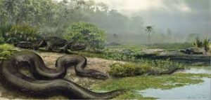 Titanoboa: The Biggest Snake Species from Past
