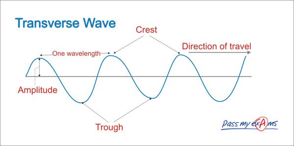 Transvers Waves