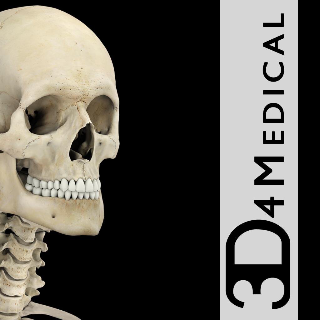Skeleton System pro - apps