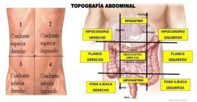 Fisiopatología del dolor abdominal para estudiantes de medicina