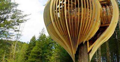 Arquitectura orgánica: ejemplos y autores para estudiantes de arquitectura