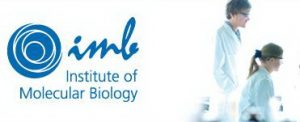 Doktorat pri Institutu Molekularne Biologije, Nemacka